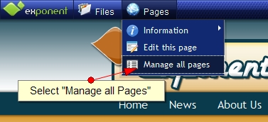 Exponent CMS Manage All Pages