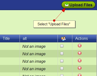 Upload Files to Exponent CMS File Manager